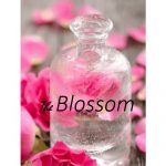 Hydrosol Floral Water (Rose)